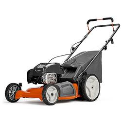 lc121p 163cc 21-in gas push lawn mower with mulching capabil